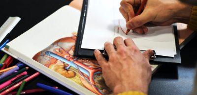 Un cours d'anatomie à la faculté d'étiopathie de Paris